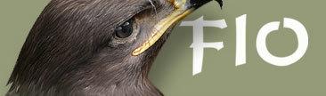 Feria Internacional de Turismo Ornitológico en Cáceres
