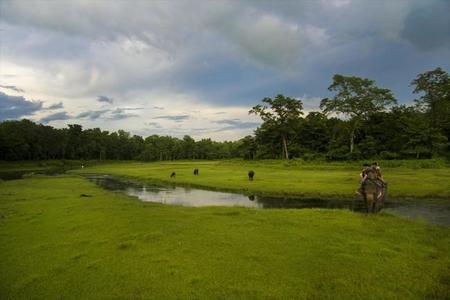 El Parque Nacional de Chitwan en Nepal