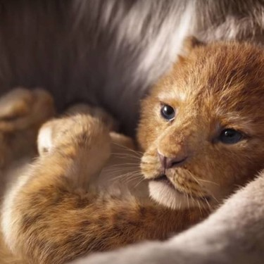 El nuevo tráiler de 'El Rey León' nos enamora todavía más del pequeño Simba