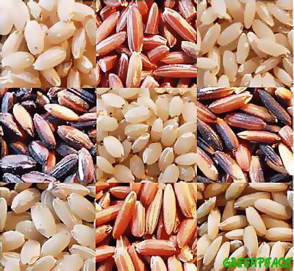 Virtudes dietéticas del arroz