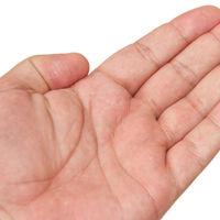 Un nuevo estudio resuelve parte del misterio de que tengamos 5 dedos por mano