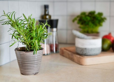 11 recetas con romero, la hierba aromática que perfuma nuestros platos y nuestra cocina