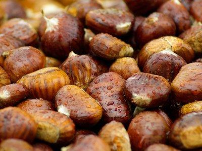Todo sobre las castañas: propiedades, beneficios y su uso en la cocina