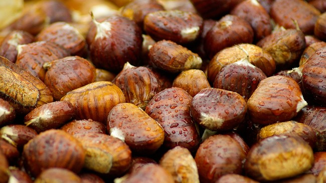 Chestnuts 994138 1280