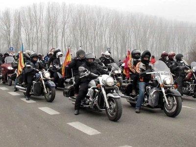 Un grupo de asistentes a Pingüinos colaboran en un caso de atropello y fuga en Valladolid