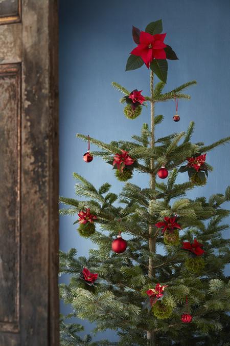 2016 Poinsettia Bola Arbol Navidad 01 Es