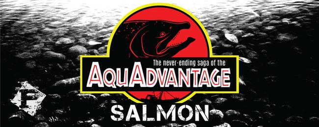Salmonarticle