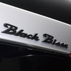 Foto 23 de 23 de la galería toyota-land-cruiser-black-bison en Motorpasión