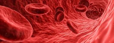 373 proteínas seleccionadas en la sangre podrían usarse para predecir con precisión la edad de una persona
