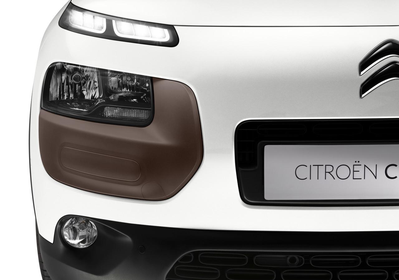 Foto de Citroën C4 Cactus (4/85)