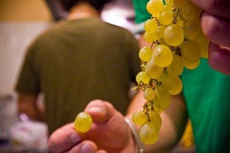 Mini-uvas para la Nochevieja de los niños