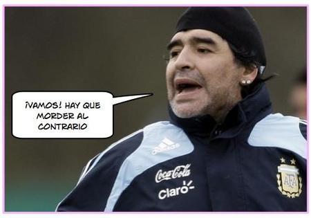 Maradona no pudo regatear a su perra y ésta le mordió