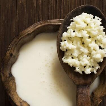 Qué son y para qué sirven los búlgaros de leche