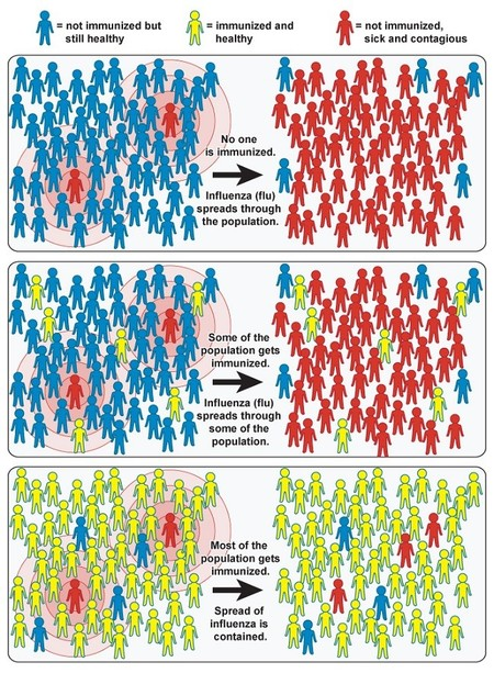 Community Immunity