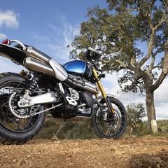 Foto 62 de 91 de la galería triumph-scrambler-1200-xc-y-xe-2019 en Motorpasion Moto