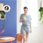 Adiós a las paredes desnudas: 5 ideas para llenarlas de vida