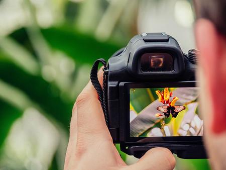 Evitar Fotos Borrosas Eligiendo Af Correcto 06