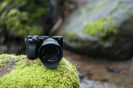 Olympus OM-D E-M10 Mark III, Sony A6000, Canon EOS 200D y más cámaras, objetivos y accesorios en oferta: Llega Cazando Gangas