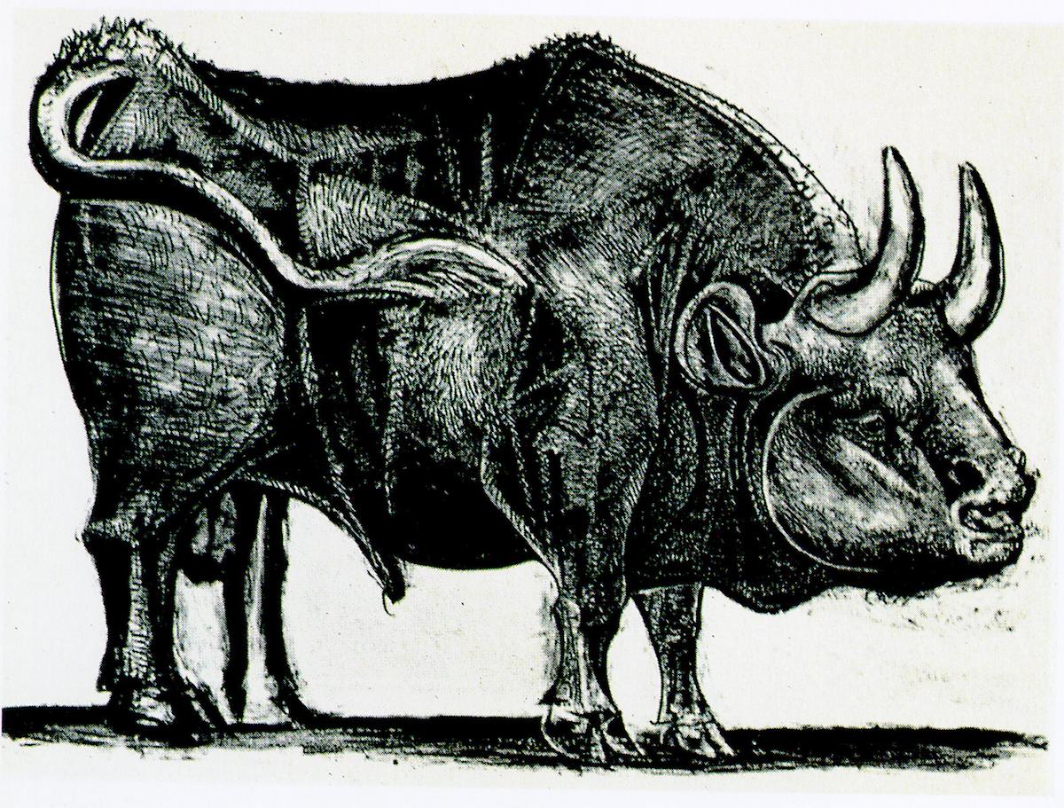Foto de Toro de Picasso (3/11)