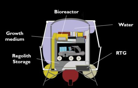 Csm Reactor 2beeec1e23