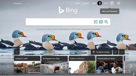 Usa Bing