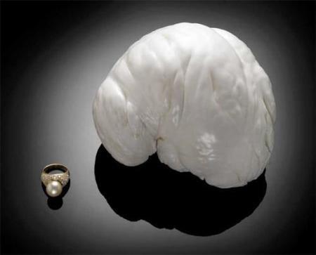 The Palawan Princess: qué pasó con la subasta de la perla más grande