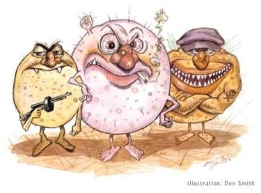 ¿Por qué las intoxicaciones alimentarias aumentan en verano?