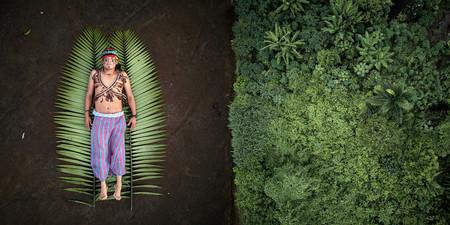 Sony World Photography Awards 2020: estos son los ganadores de la sección profesional y el fotógrafo del año