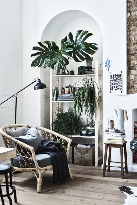 Ikea Plantas Ph148943