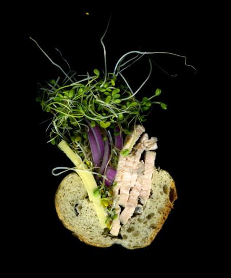 Scanwiches, los sándwiches seccionados de Jon Chonko