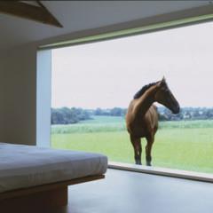 Foto 2 de 19 de la galería casas-que-inspiran-una-granja-en-blanco en Decoesfera