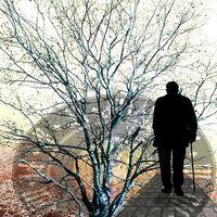 Dormir seis horas o menos por noche entre los 50 y 60 años se asocia con un mayor riesgo de demencia