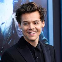 Harry Styles podría ser el príncipe Eric de carne y hueso en el remake de 'La sirenita' de Disney (y la idea nos encanta)