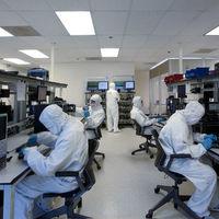 """""""Necesitamos prepararnos urgentemente para nuevos ataques bioterroristas"""", avisa la mayor institución científica de EEUU"""