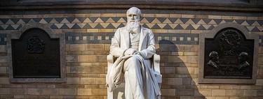 Lo políticamente correcto llega al Museo de Historia Natural de Londres: se propone revisar algunas exposiciones de Charles Darwin