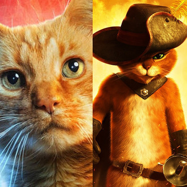 De Jones ('Alien') a Goose ('Capitana Marvel'): 11 gatos de cine que son unos perfectos robaescenas