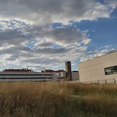 Foto 4 de 29 de la galería fotos-tomadas-con-el-tcl-20-se en Xataka Móvil