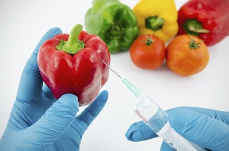 ¿Son seguros los alimentos transgénicos?
