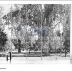 Foto 4 de 9 de la galería nuevo-campus-de-apple en Applesfera