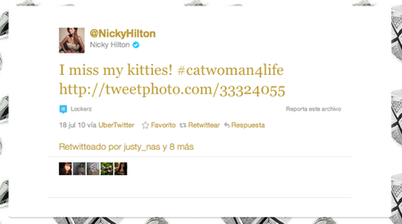 nicky hilton gatos
