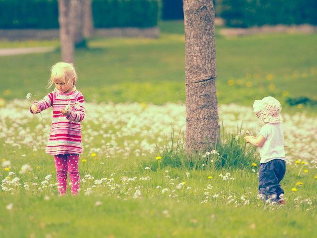 Niños en la naturaleza