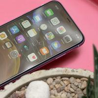 Apple se convertirá en el principal sustento del consorcio Japan Display: clave para las pantallas LCD de los iPhone 11