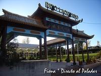 Pato Laqueado, comida china en Madrid