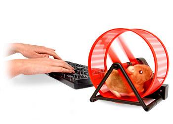 Hamster USB, tu mascota en la oficina
