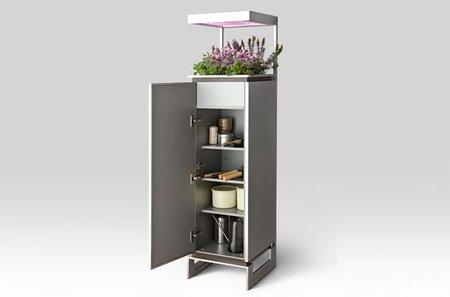 Los contenedores de Toyo Kitchen, un jardín en la cocina