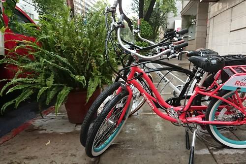 Pedego, la marca con bicis eléctricas de hasta 100 kilómetros de autonomía, llega a México