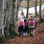 Cyber Monday 2019: ofertas en abrigos The North Face, Columbia, Napapijri o Geographical Norway en Amazon