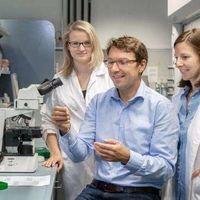 Las bacterias, junto con celular, podrían desencadenar el cáncer de colon