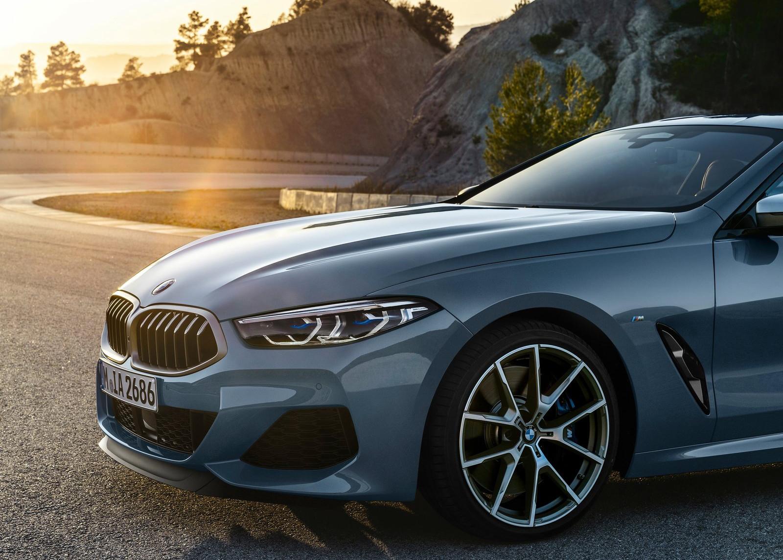 Foto de BMW Serie 8 (50/57)