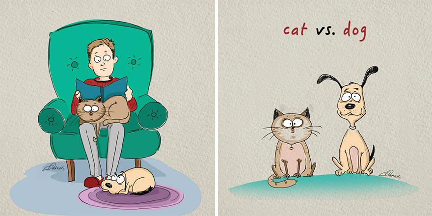Gatos vs. Perros